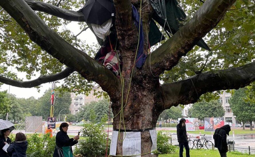 Oranienplatz: Geflüchtete besetzen Baum für Bleiberecht und Offene Grenzen