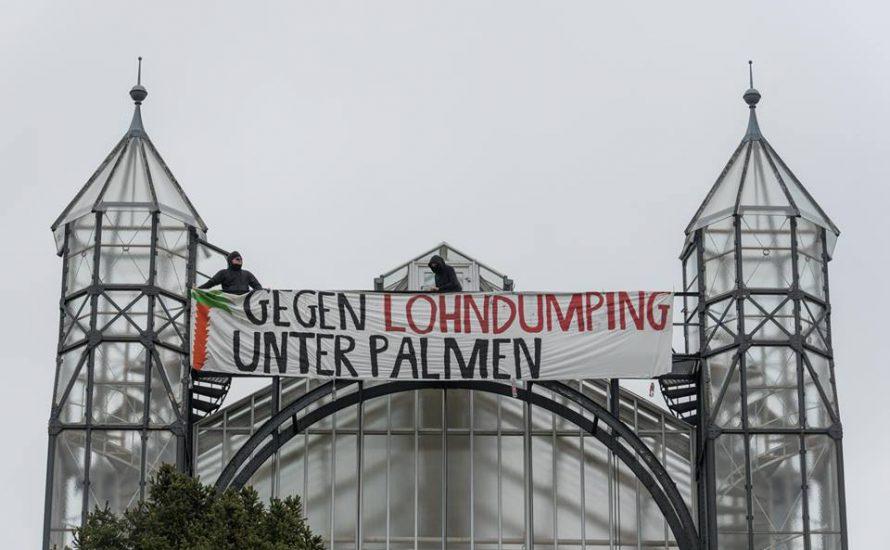Banner Drop am Gewächshaus