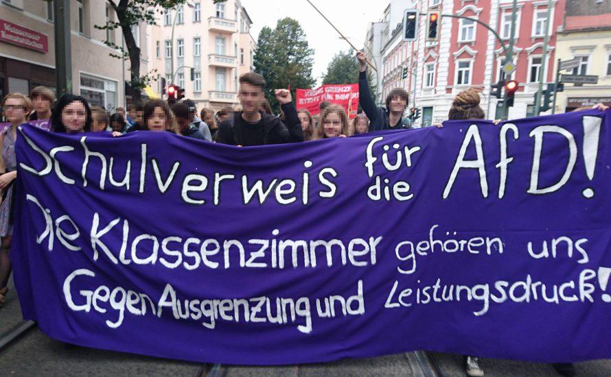 Was sagt die AfD zum Schulstreik gegen die AfD?