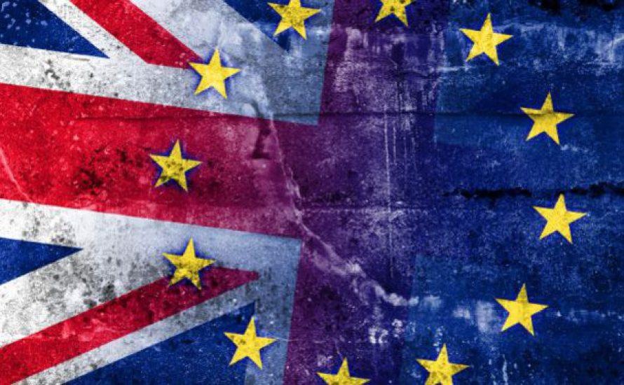 Brexit: Mit Cameron für's Ja oder mit der UKIP für's Nein?