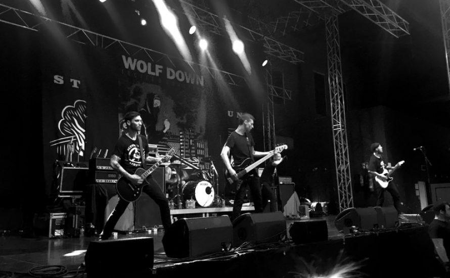 Wolf Down: Bandauflösung nach Bekanntwerden sexualisierter Übergriffe