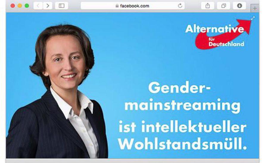 Selber kämpfen: Frauen und LGBT* gegen die AfD