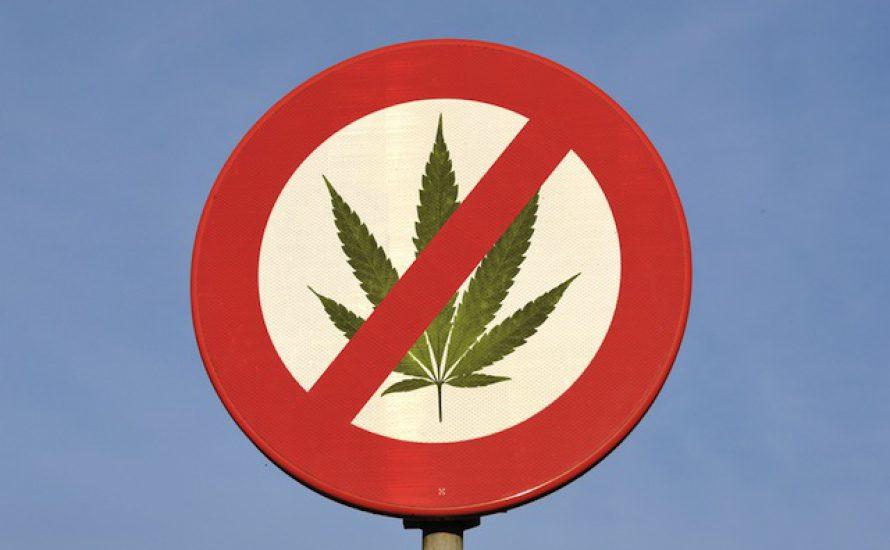 Wie wir gegen Prohibition kämpfen können