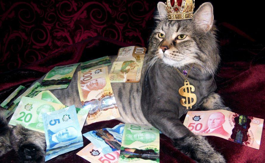 Die 10 reichsten Deutschen machten seit Corona 40 Milliarden neues Vermögen