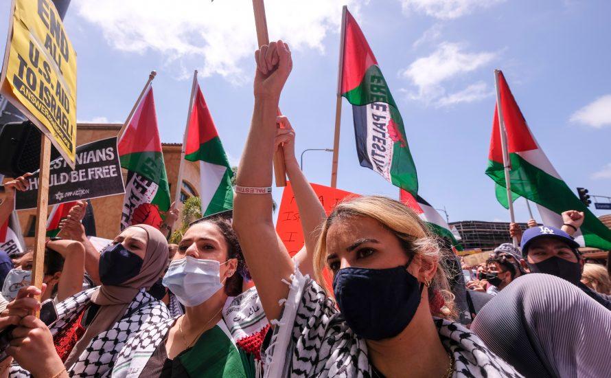 Palästina-Solidarität: Was sind die Aufgaben der Bewegung in Deutschland?