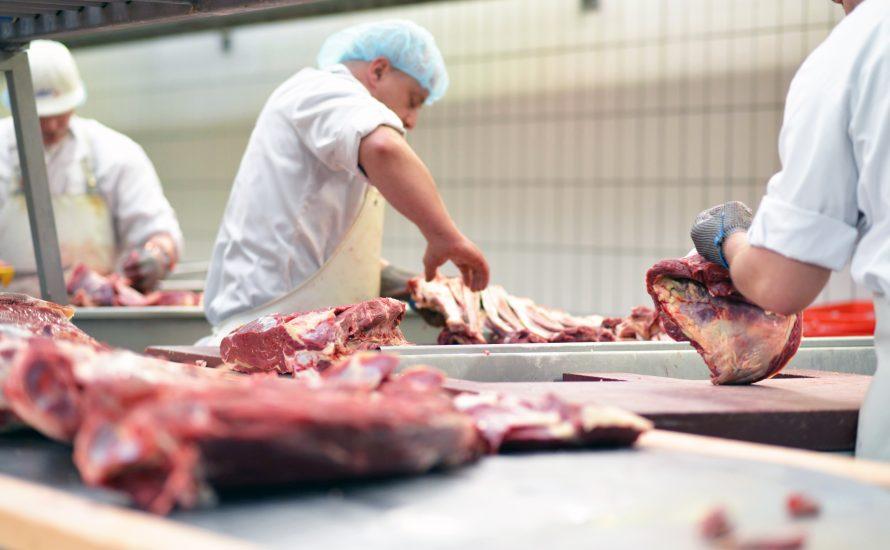 Leiharbeit in der Fleischindustrie verboten - schön und gut, aber Tönnies muss trotzdem enteignet werden!