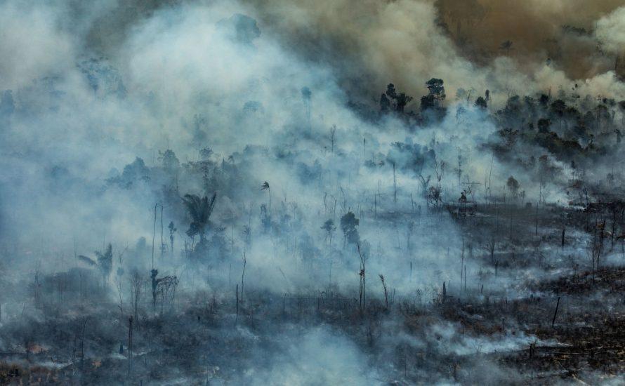 Amazonas: Stoppen wir die räuberische Gier von Bolsonaro und den Kapitalist*innen