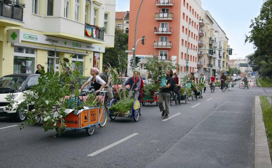 Urban Gardening: Sinn in der Stadt