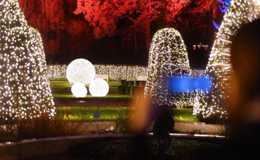 Freitag, 2. Dezember: Protest am Botanischen Garten
